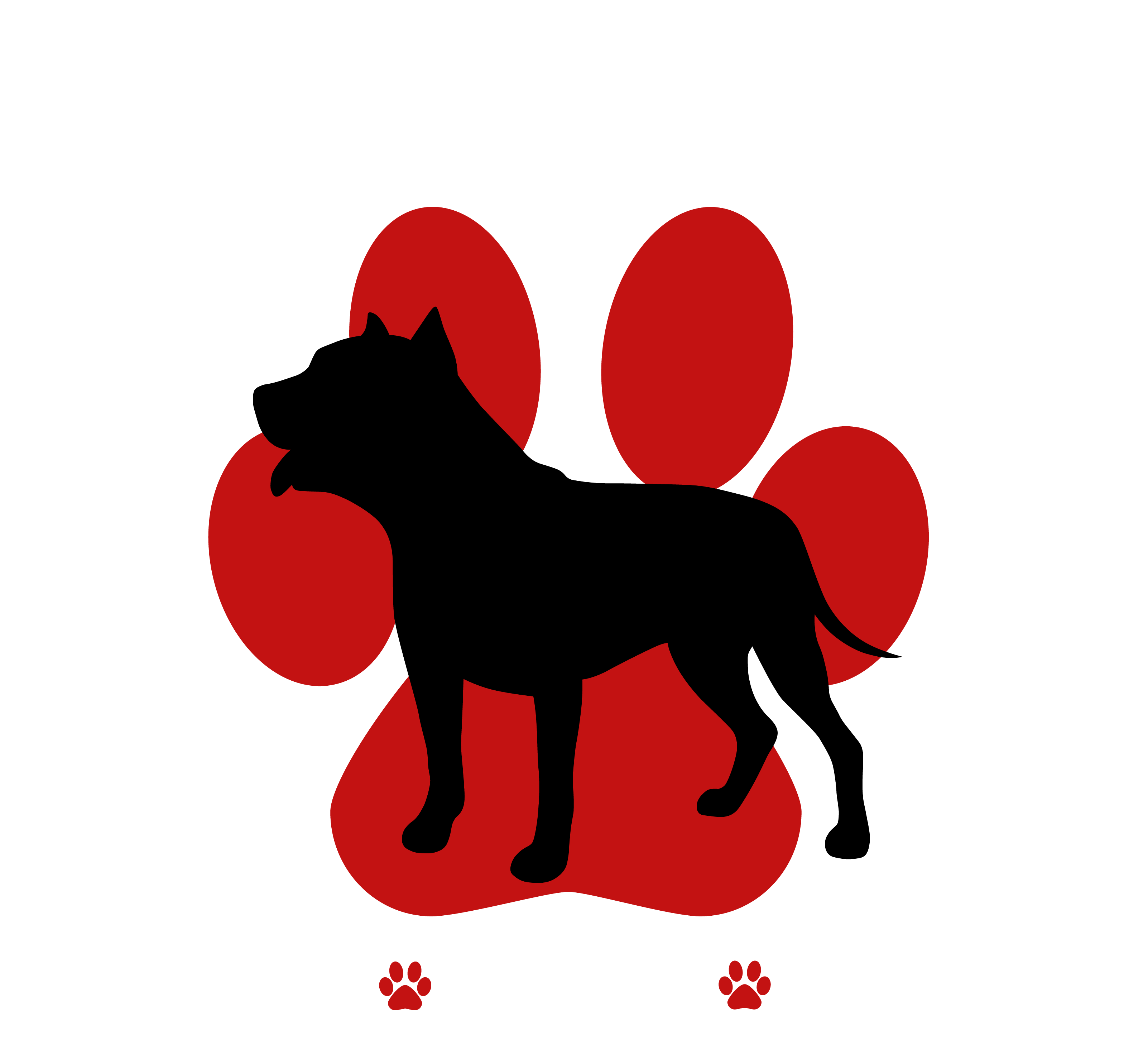 Patras Pitty Project White Text TRANSPARENT BG