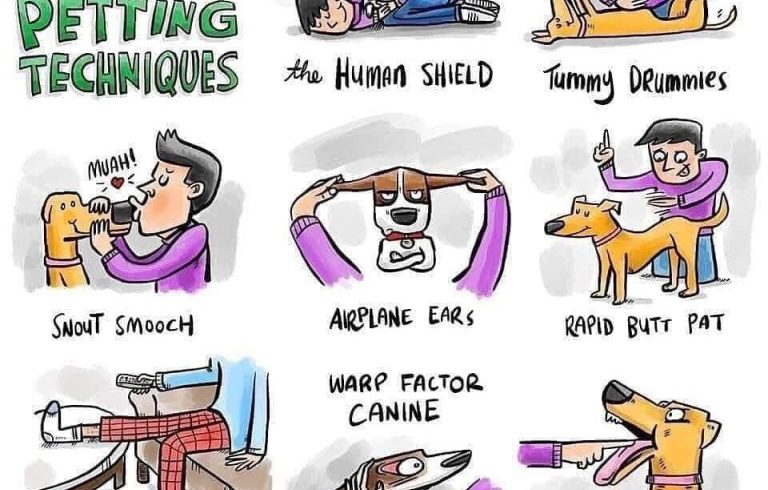 More dog petting techniques